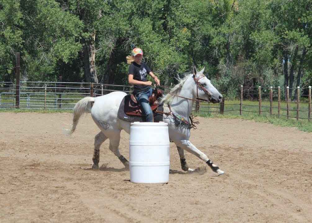 Anne Bartron, Barrel Racing