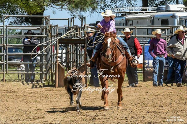 Colby Yarborough, Rodeo