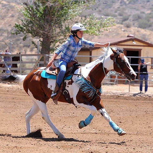 Melanie Nicholson, Barrel Racing