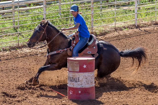 Taylor Anne Dohmann, Barrel Racing