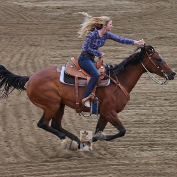 Carly Gifford, Barrel Racing