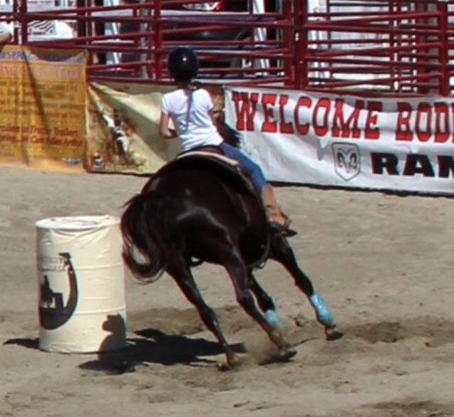 Hailey Tinney, Barrel Racing