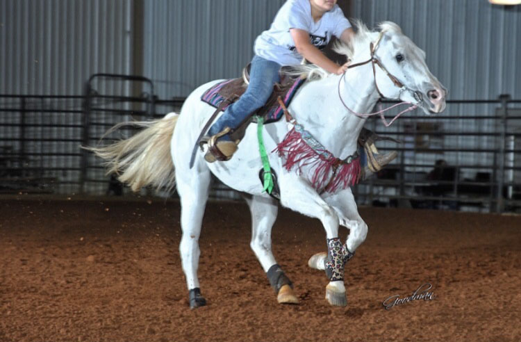 Taryn Brownlee, Barrel Racing