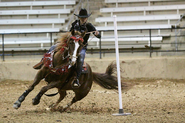 Sarah Paige Robertson, Barrel Racing
