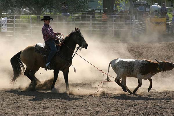 Jake Hawkins, Barrel Racing