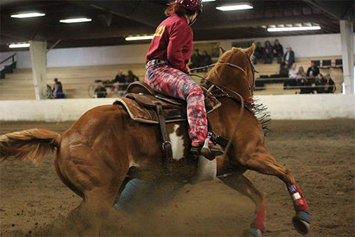 Kylee Brutsche, Barrel Racing