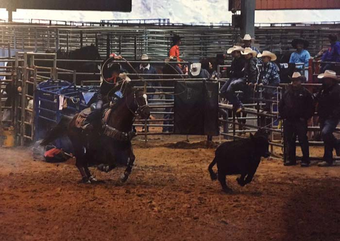 Morgan Westling, Barrel Racing